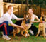 Helping my friends Tonya & Jim train their 2 GSD, Harley & Chase
